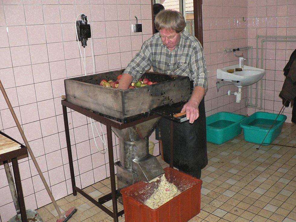 V moštárně zahrádkářů v Nových Hodějovicích už je sezóna v plném proudu. Drtič v režii Jana Předoty, předsedy územního sdružení zahrádkářů.