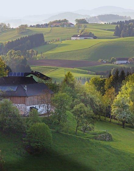 Pahorkatina kolem Rechbergu.