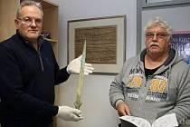 3000 let starý meč.
