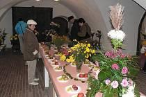 Tvrz Žumberk nabídla chryzantémy i originální zeleninu.
