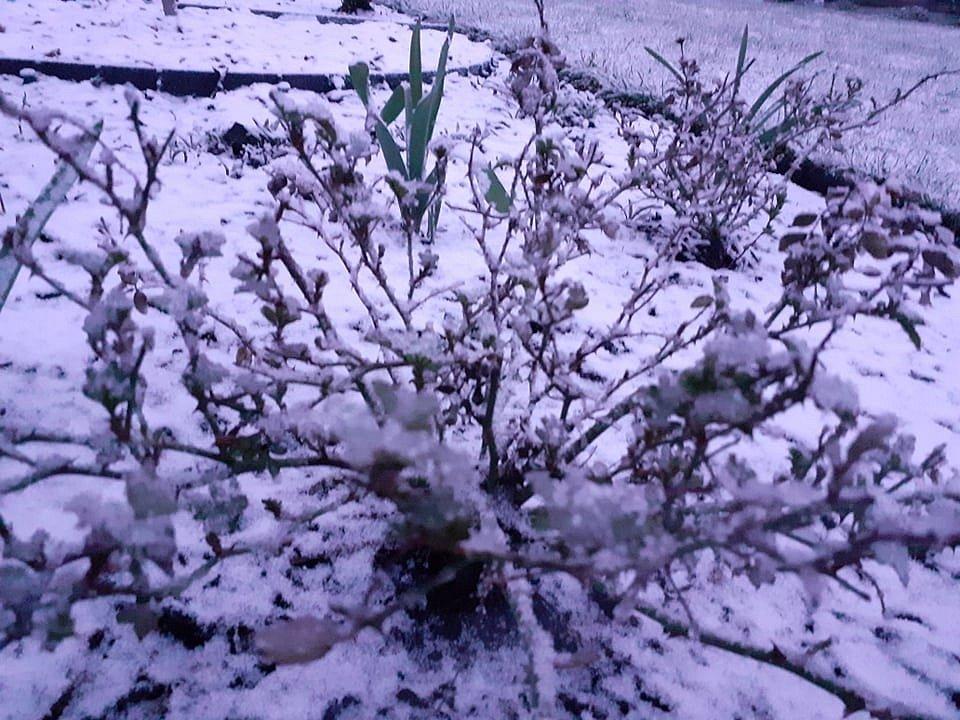 Tohle že je jaro? Opět nasněžilo, v dalších dnech to nebude jiné.