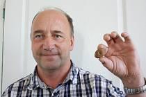 Jan Síkora ukazuje houbu, kterou dosud neznal. Jedná se o jelenku obecnou.