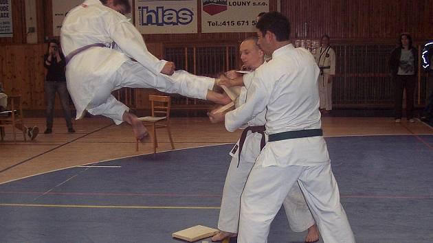 Ondřej Podhora z TJ karate Nové Hrady na mistrovství ČR v Lounech při tameshi wari.