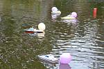 Ledeničtí lodní modeláři uspořádali v sobotu na rybníce Lazna soutěž autorů maket lodí.