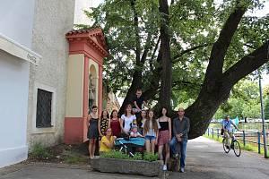 Nominovaným stromem v anketě Strom roku je ve finále českobudějovická lípa, která se vyjímá u slepého ramene řeky Malše.
