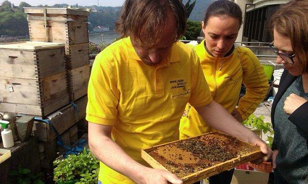 Linečtí městští včelaři.