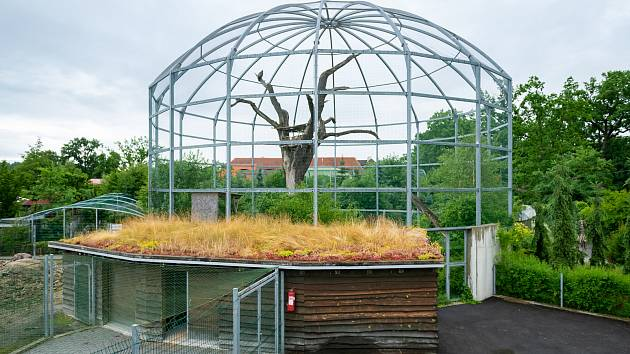 Finálové projekty ze Zoo Hluboká