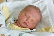 Staršími sourozenci jsou od 25. 3. 2019 5letá Kačenka a 3letý Honzík z Hosína. Maminka Petra Puffer v tento den ve 23.28 h. porodila Veroniku Puffer, vážila 3,52 kg.