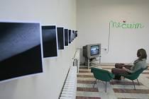 V Bechyni byla 11. února oteřvena nová umělěcká galerie s názvem 2+1, která se hodlá zaměřit především na současné umění.