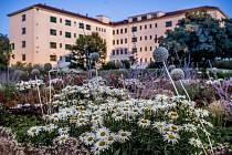Centrální park je barevnou chloubou nemocnice. Roste tu 75 druhů trvalek, z toho 14 druhů léčivek.