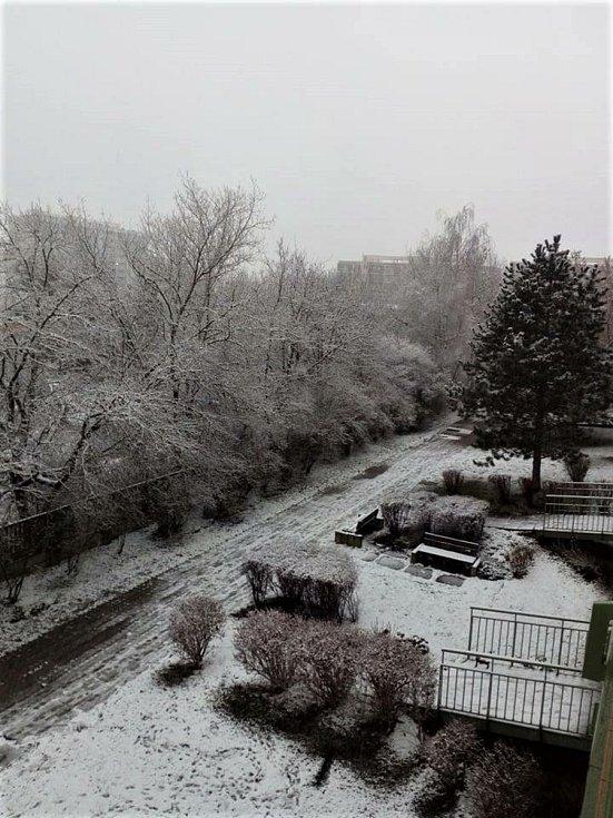 Na sněhuláka to není, ale i Praha už je bílá. Foto: Jana Žáková Musilová