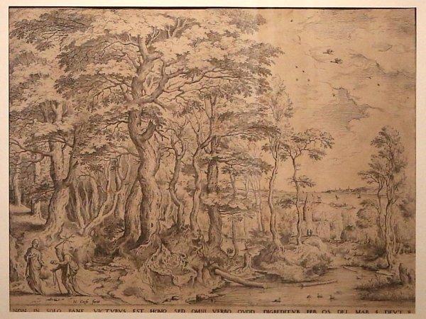 Alšova jihočeská galerie nabízí do 24.ledna promyšlenou výstavu grafik barokní krajiny.