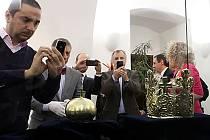 Do Budějovic dorazily pohřební insignie Přemysla Otakara II.