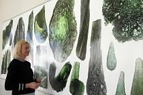 Výstava Vltavíny a jiná přírodní skla nabízí v Jihočeském muzeu to nejlepší z jeho sbírek, jež vznikaly téměř sto let, a to včetně vltavínové zlaté éry trvající od roku 1954 do roku 1961, kdy v muzeu působil světově proslulý badatel Jan Oswald.
