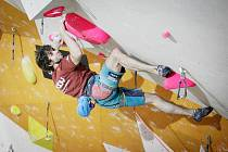 Výrazný úspěch jihočeského sportovce, ze stěny stačil i zamávat.
