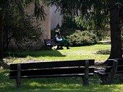 Biskupská zahrada na Zátkově nábřeží byla jedním z hlavních lákadel sobotního Mezinárodního dne památek. Za dopoledne ji navštívilo až 300 lidí. Otevírá jen dvakrát ročně.