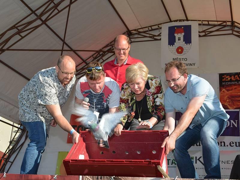 Benefiční koncert a dětský den Kdo má rád se v sobotu premiérově uskutečnil na zámku Nové Hrady.
