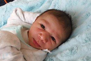 V Ledenicích vyroste Adam Demeter, kterého maminka Eva Demeterová přivedla v českobudějovické nemocnici na svět 16. 1. 2018ve 14.10 h. Adam vážil 3,05 kg.