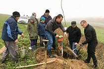 Dobrovolníci pracují, aby podpořili komunitní život ve svých obcí. Tak je to mu i ve Svatém Janu nad Malší, kde vysadili stromořadí.