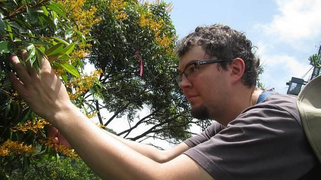 Martin Volf při sběru vzorků v korunách stromů z výzkumného jeřábu v Panamě.