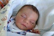 Miminko Šimon Hons se narodil 21. listopadu 2017. Maminka Tereza Martinů ho v českobudějovické porodnici přivedla na svět v 17.15 hodin a vážil 3580 gramů. Prvorodička bude svého syna vychovávat ve Starých Hodějovicích.