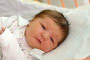 Jasmine Houfková se rodičům Kristině Srbové a Jakubovi Houfkovi narodila 24. listopadu 2017 v českobudějovické porodnici. Na svět přišla v 18.10 hodin. Po porodu  vážila 4330 gramů. Vyrůstat bude v Českých Budějovicích.