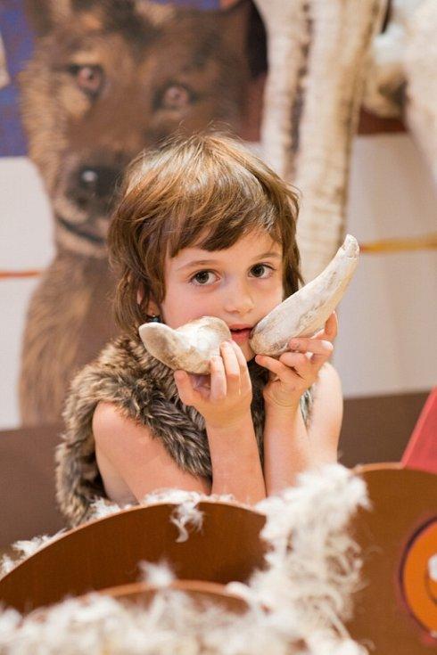 Písecká Sladovna nabízí novou výstavu Stroj času. Děti přenese do pravěku, antického Říma, za Kelty, do středověku, renesance i 19. a 20. století. Výstava potrvá do 26. dubna 2015. Malá dívka v epoše pravěk.