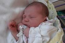Čtyřletá Sabinka už se moc těší na příjezd sestřičky Denisy Lovečkové. 3,10 kg vážící Deniska se narodila poslední březnový den roku 2015 přesně ve 23 hodin a 24 minut. Obě holčičky budou spolu s rodinou bydlet v Českých Budějovicích.