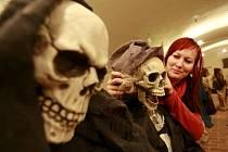 Ve Strakonicích začíná 21. března loutkářská přehlídka Skupovy Strakonice. Doprovodný program nabízí i výstavu strašidel a pohádkových bytostí.