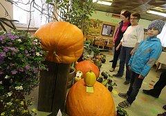 Výstava plodů podzimu v moštárně v Nových Hodějovicích v Českých Budějovicích
