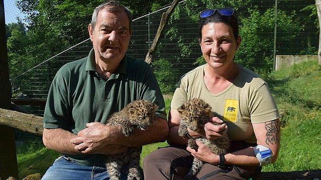 Leopardí slečny vdobrých rukou.
