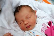 České Budějovice budou domovem novorozené Amélie Novákové. Maminka Dominika Jarošová ji porodila 19. 11. 2018 ve 13.58 h., vážila 3,07 kg.