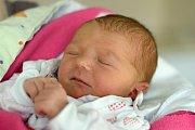 Markéta Janoušková se narodila 22. 10. 2018. Maminka Dagmar Janoušková ji porodila v 10.10 h., vážila 2,90 kg. Doma v krajském městě na ni čekal 11letý brácha Jan. Foto: Ilona Lonsmínová