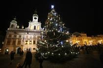 Vánoční strom na náměstí Přemysla Otakara II. v Českých Budějovicích.