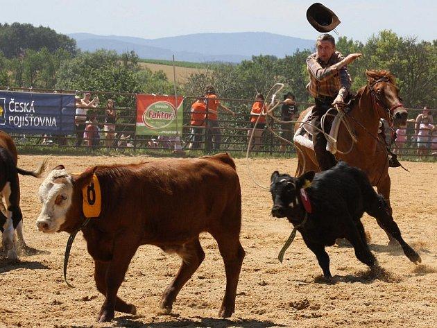 Na rodeu v Plástovicích nebyla o netradiční podívanou nouze.