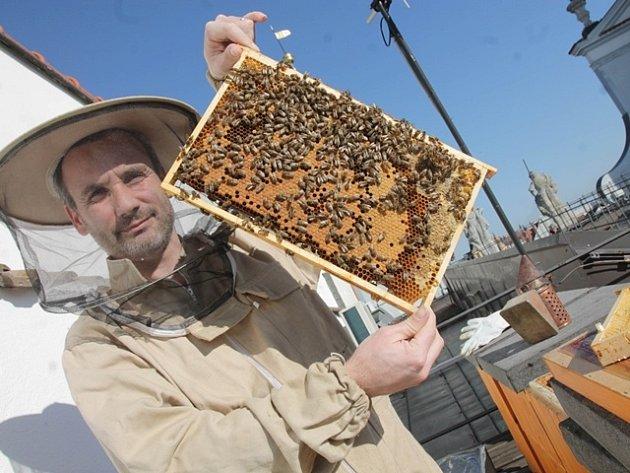 Aleš Mikšátko se stará o včely na střeše budějovické radnice.