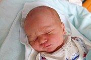 V Lišově bude poznávat svět novorozený Max Kandl. Maminka Loren Reitingerová jej porodila 27. 3. 2018, ve 2.37 h. Malý Max po porodu vážil 3,31 kg.