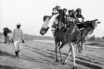 Jižní Palestina, jeden ze snímků, které vystavuje táborské Muzeum fotografie Šechtl a Voseček. Poutníci na cestě do Nabi Rubin. Šest žen a dětí s tábornickým vybavením na velbloudovi. Muslimové věří, že svatyně Nabi Rubin je hrob proroka Reubena.