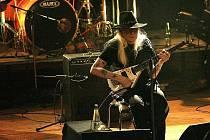 Kytarista a zpěvák Johnny Winter vyniká kromě hudebního podání také svým vzhledem.