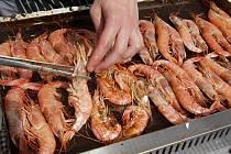 Vůně ryb a léta. K tomu sklenka dobrého vína a piknik na dece. V podobném duchu se nesla sobotní akce Slavnosti moře na Slovanském náměstí.