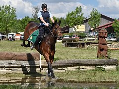 Dvacátý ročník Mezinárodního policejního mistrovství v jezdectví se konal v brněnské Panské Líše. Nechyběl ani doprovodný program s policejními ukázkami.