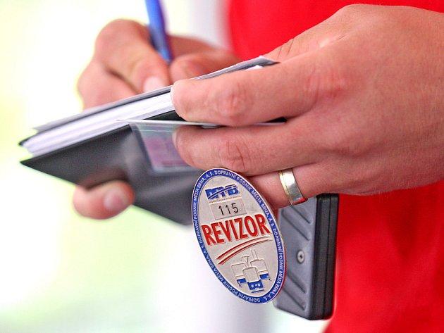 Revizor kontrola - Ilustrační foto.