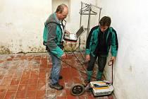 Už na začátku průzkumu odborníci zjistili, že podzemí u kostela poblíž hradu Veveří ukrývá část klenby.