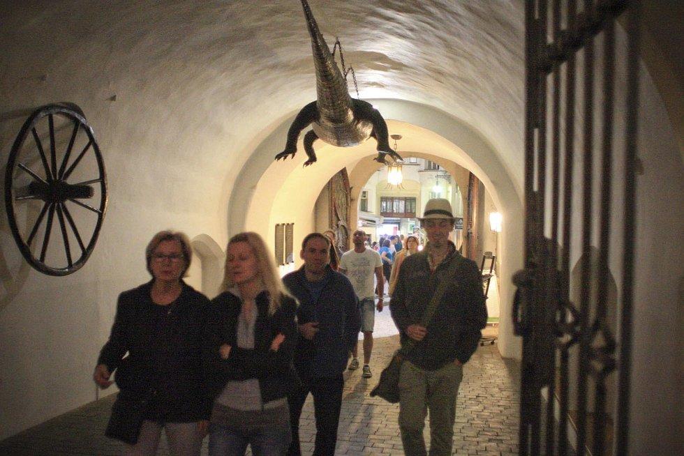 Jednou do roka otevřou brněnská muzea, galerie a další instituce své brány dlouho do noci. Tato kombinace už několik let po sobě láká mnoho Brňanů i návštěvníků z okolí na Muzejní noc, během níž je pro ně připravený speciální a netradiční program.