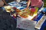Akce Česko jde spolu na piknik vyzvala lidi z různých míst naší země, aby pořádali ve stejný čas piknik. Na snímku akce v Ústí nad Labem.