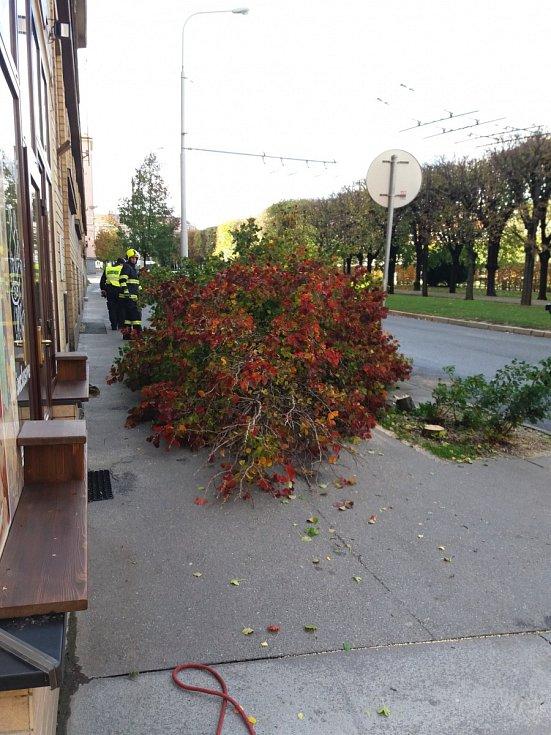 Následky silného větru na Slovanském náměstí v Brně-Králově Poli.