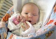 Magdaléna Labudová 31.12.2007 Nemocnice Milosrdných bratří