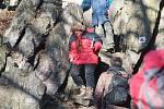 Šestačtyřicátý ročník výstupu na Babí lom nedaleko Brna. Turisté si vyšli na Nový rok.