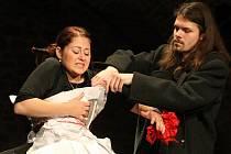 Inscenovanou poezii členů Studia Dům aneb Texapeal na nože v pátek pod názvem Rokřik divákům poprvé představí režisérka Eva Tálská.