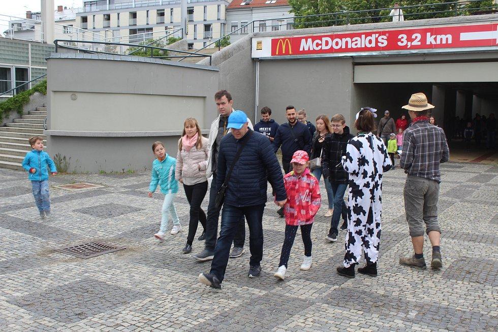 Lidé sbírali před výstavištěm podpisy pod petici pro zákaz klecového chovu slepic